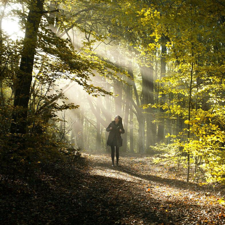 En person som vandrar på stig i skogen där ljus tränger igenom trätopparna.